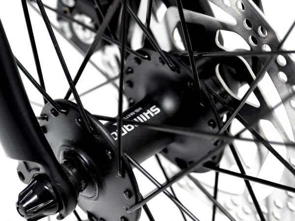 Avaris Ebike Wheel