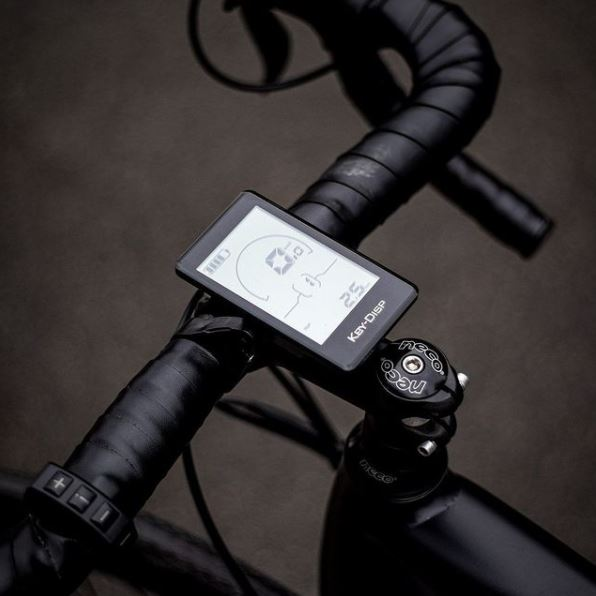 eco-friendly electric bike